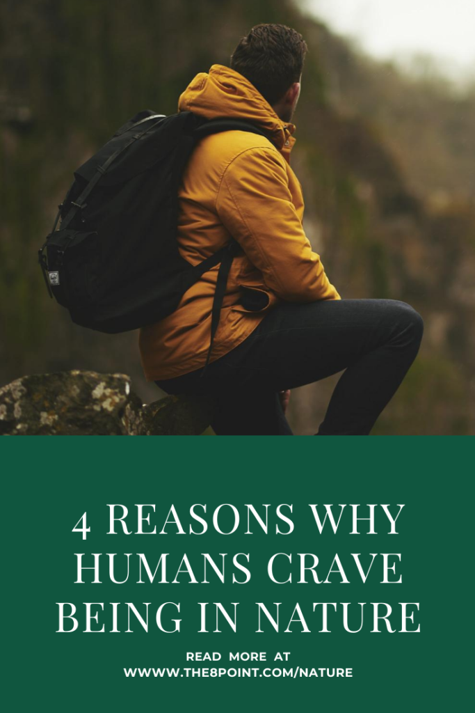 4 Reason Why Humans Crave Being In Nature