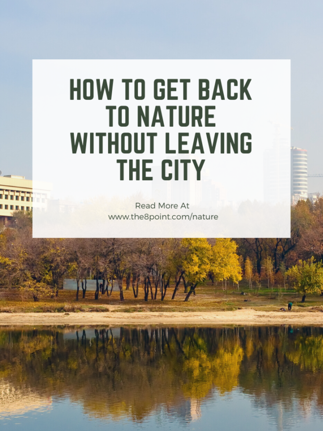 How to Get Back to Nature Without Leaving the City